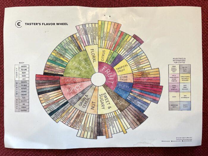 Taster's Flavor Wheel